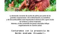El cultivo del aceite de palma La demanda creciente de aceite de palma por parte de las grandes corporaciones de la alimentación, la cosmética y de biocombustibles está impulsando la […]