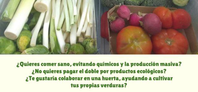 ¡Buscamos gente interesada en comer sano y de forma responsable! Más información en el cartel y en nuestra web: https://wp.sindominio.net/surcoasurco/ O contactar por correo electrónico sas@lapiluka.org